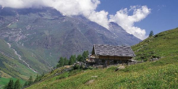 Von der Faltschnalalm führt der Tiroler Höhenweg zum Spronser Joch hinauf.