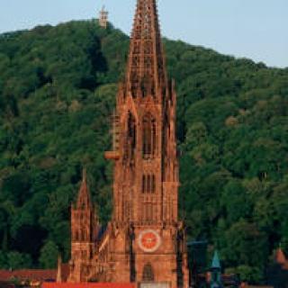 Das Freiburger Münster.