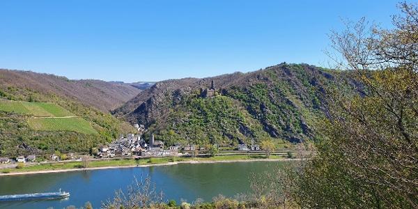 Blick aufs Rheintal und die Burg Maus
