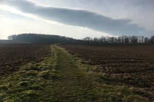 Foto Wanderweg kurz nach Köttwitz