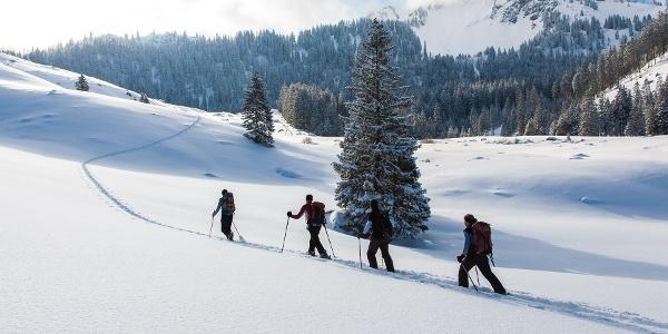 Liebliches Skigelände vor der Unteren Freudenreichalm