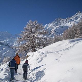 Winterwandern Hannig