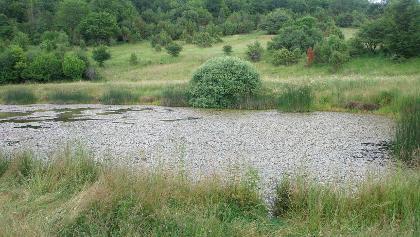 Vörös-tó