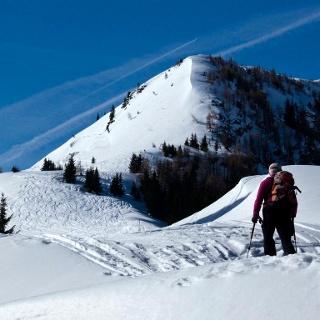 Von der Scheibe zeigt sich der steile Gipfelaufschwung, der links umgangen wird.