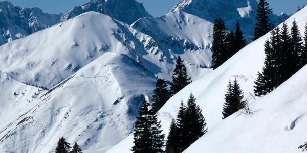 Studium des Karwendelgebirges vom Gröbner Hals aus (Östliche Karwendelspitze und Vogelkarspitze)