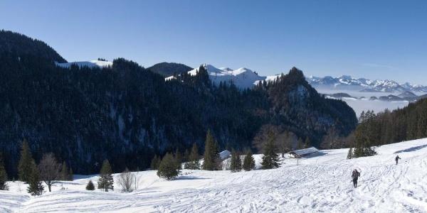 Panoramablick bei der Talalm