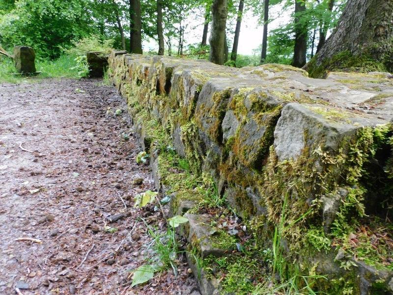 Foto: Römische Langmauer 2