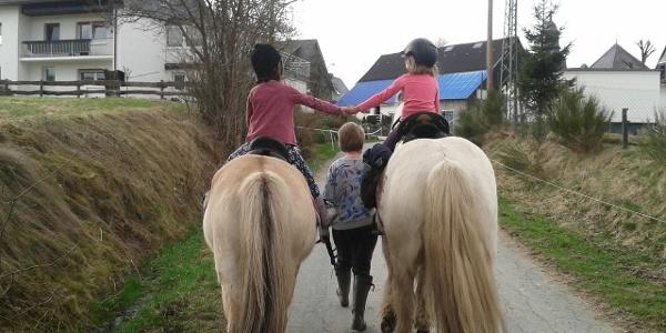 Ponyhof Pension Klein
