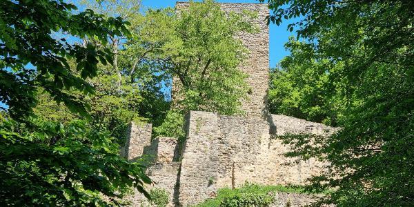 Die Hardtburg