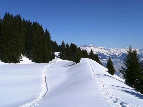 Schneeschuh-Tour Furna - Scäri - Furna