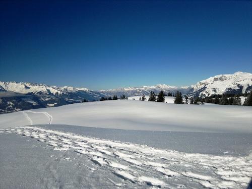 Schneeschuh Rundtour Ried Furna