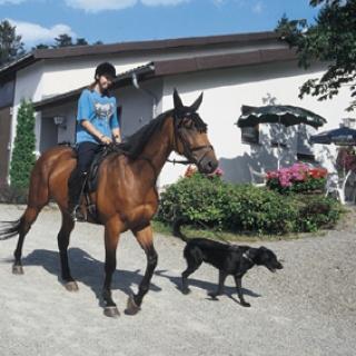 Reit- und Fahrverein Loffenau