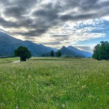 The meadows at Blejska Dobrava