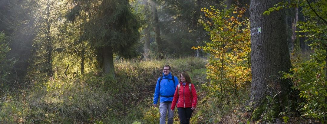 Auf der Sauerland-Waldroute am Möhnesee