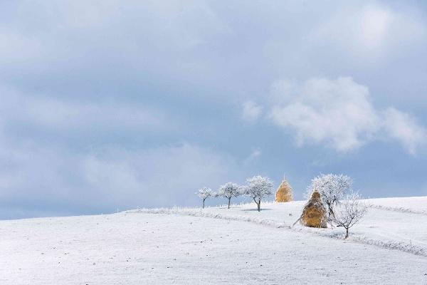 Cărare izolată într-un sat din Maramureș