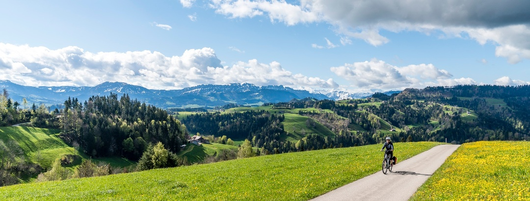 Panoramareiche Velostrecke auf den Menzberg