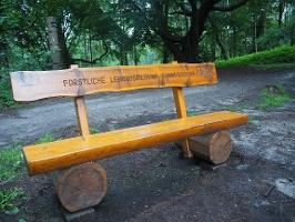 Foto Bank-Forstliche Lehrausbildung