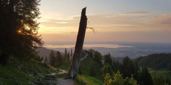 Knapp über Bründling am Hochfelln - der Blick zurück zum Chiemsee