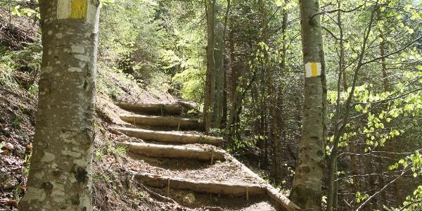 Scări improvizate pe Drumul galben spre Postăvaru