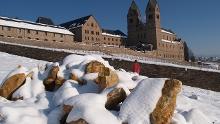 Schönste Weinsicht Rheingau