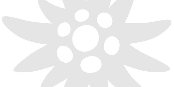 jdav-Logo_HKS65