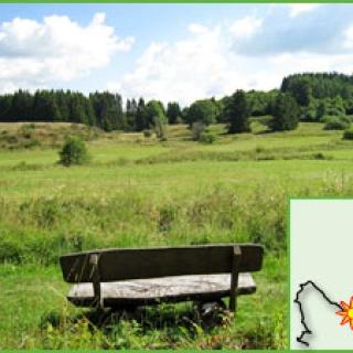 Das Naturschutzgebiet Haubachtal
