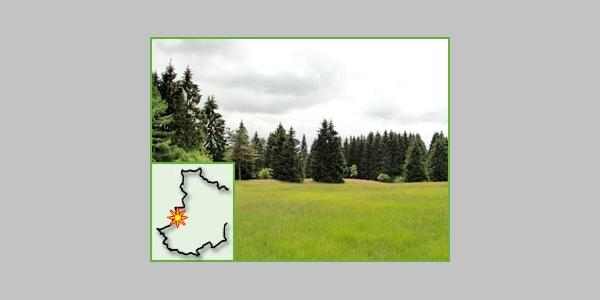 Das kleine Naturschutzgebiet