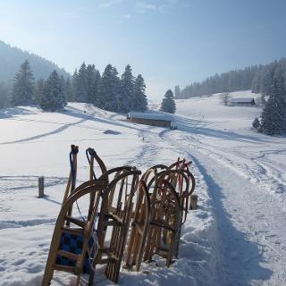 Winterwandern im Chiemsee-Alpenland