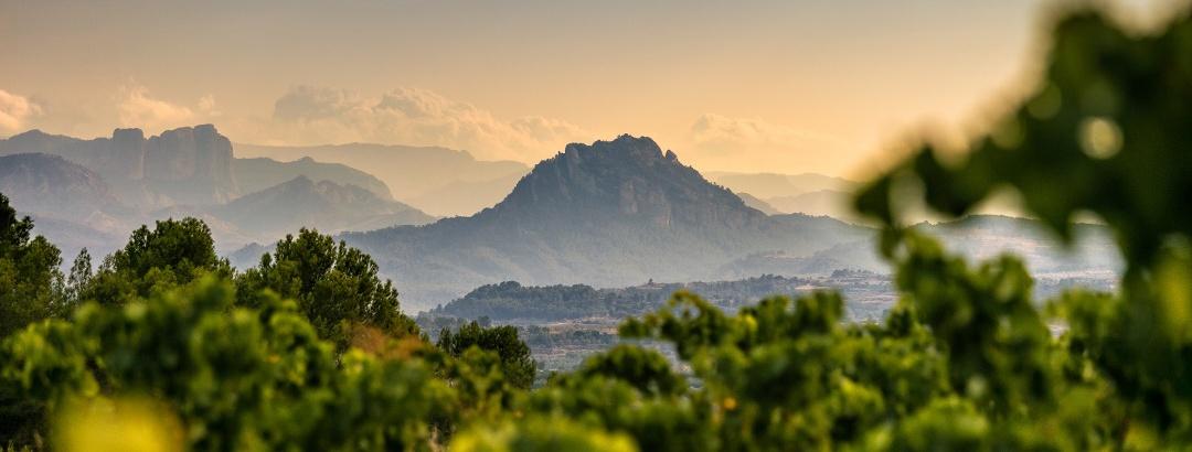 Gebirge im Parc Natural del Ports auf der Grand Tour von Katalonien