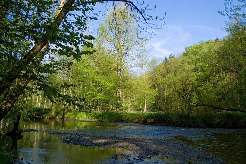 Wandern von Pfaffing aus - Auf dem Naturerlebnispfad