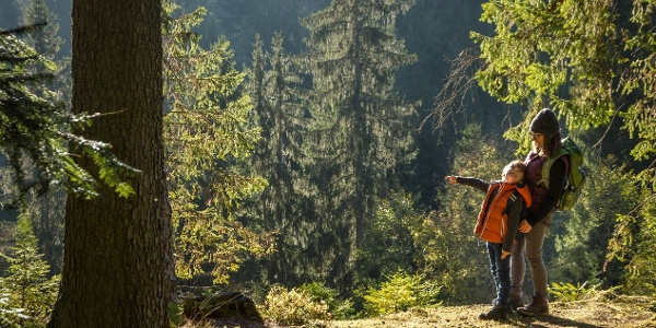 Auf dem Waldpfad Groppertal