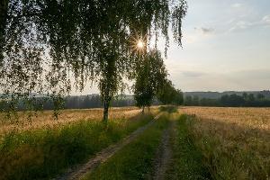 Foto Wanderweg Wendischauer Weg