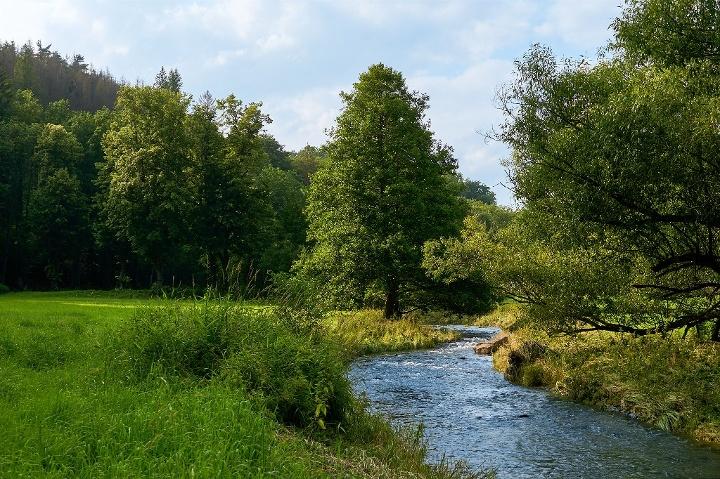 Foto Polenztal nähe Bockmühle