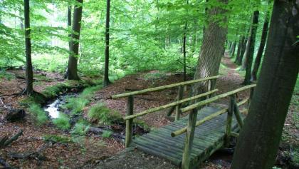 Brücke auf dem Bergmannsweg