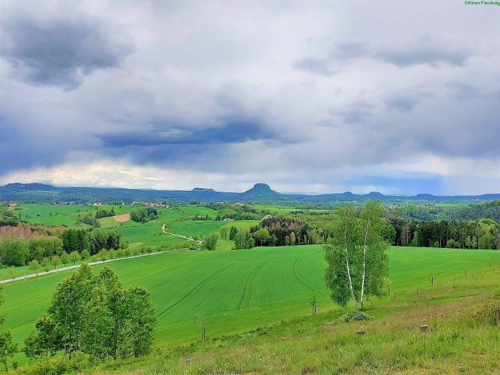 Foto Aussichtsreicher Blick zum Pfaffenstein, Festung Königstein, Lilienstein, Bärensteinen und Rauenstein