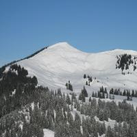 Riedberghorn (Blick vom Besler)