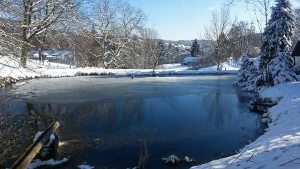 Teich an der Weschnitzquelle