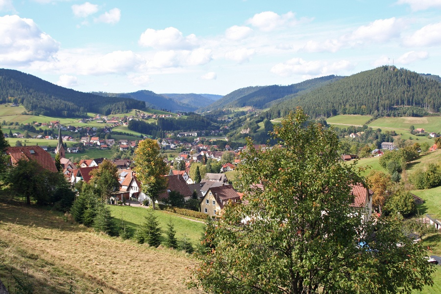 Freudenstadt: Zwei-Täler-Tour