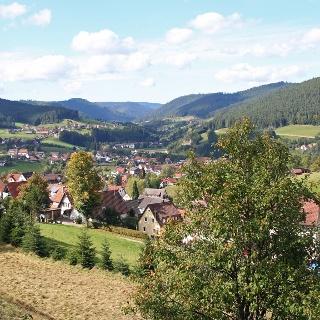 Blick auf Baiersbronn