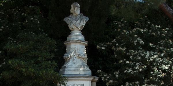 The monument to Dr. Franz Tappeiner
