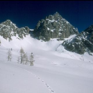 Blick von Schnittlauchmoosboden zum Torstein und Tor (2033)