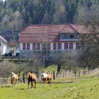 Seebichlhof