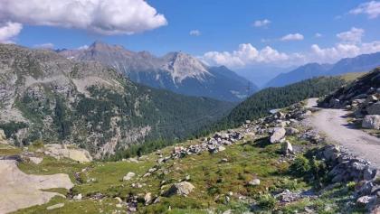 Hochplateau vor Alp Grüm