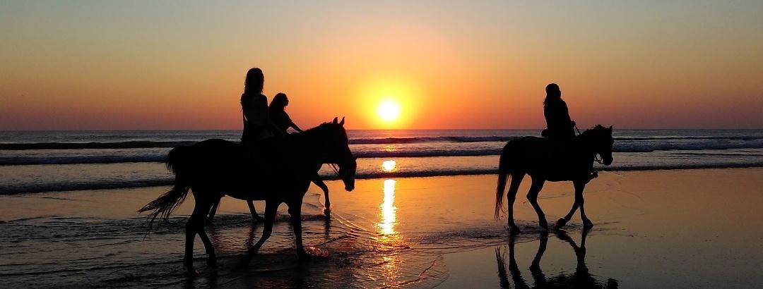 Gemeinsam mit dem Pferd in den Sonnenuntergang zu reiten.