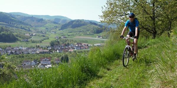 Mountainbiker in Lautenbach