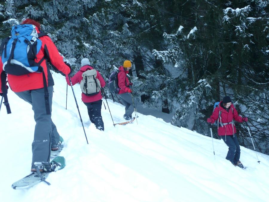 Winterwandern im Chiemsee-Alpenland-©Quelle: Brigitte Kolbeck