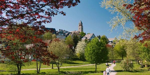 Lennepark in Schmallenberg