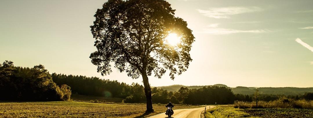 Abwechslungsreiche Motorradstrecken in Bayern warten auf dich