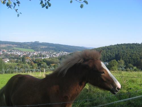 Blick auf Neuenrade vom Gersberg