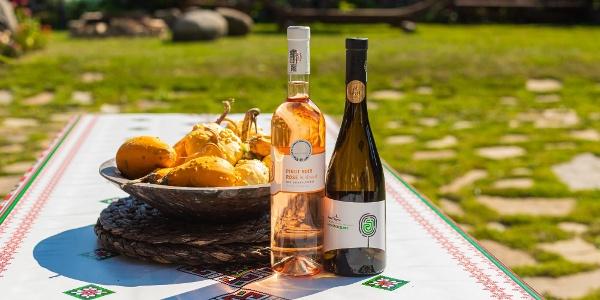 Prezentare a vinurilor de Jelna